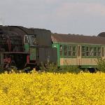 Parowozownia Wolszyn, Parowozownia Kościerzyna, Wenecja, pociągi, PKP, Bartosz Gondek, www.polnocna.tv, www.strefahistorii.pl, północna.tv, strefahistorii.pl